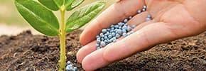 Цены на Средства защиты растений, фото