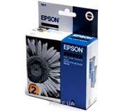 Фото Epson C13T017402