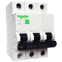 Фото Schneider Electric Easy9 (EZ9F34310)