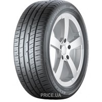 Фото General Tire Altimax Sport (205/45R17 88Y)