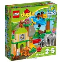 Фото LEGO Duplo 10804 Джунгли