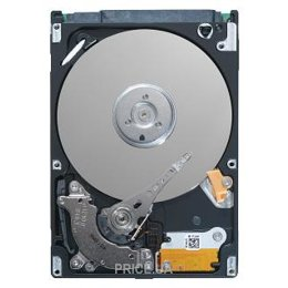Seagate ST9250827AS