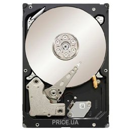 Seagate ST31000424SS