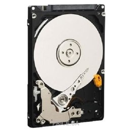 Фото Western Digital Black 1TB (WD10JPLX)